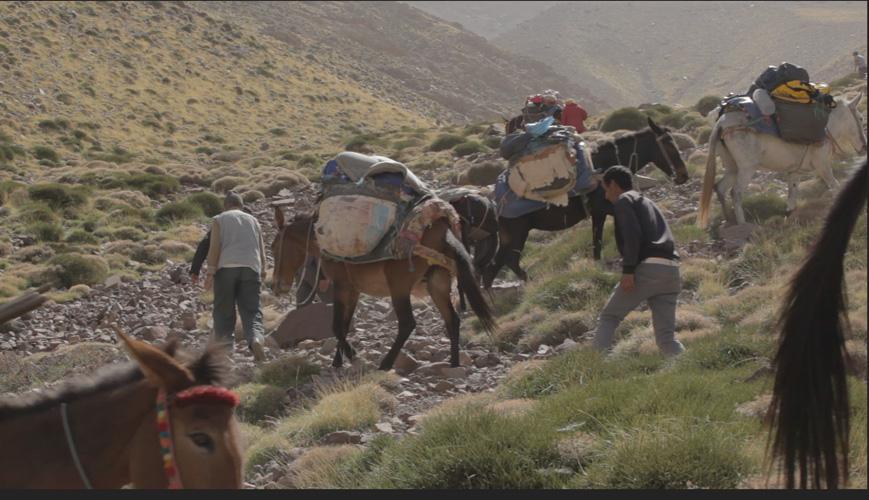 fotograma-amazigh-ralda-world (13)